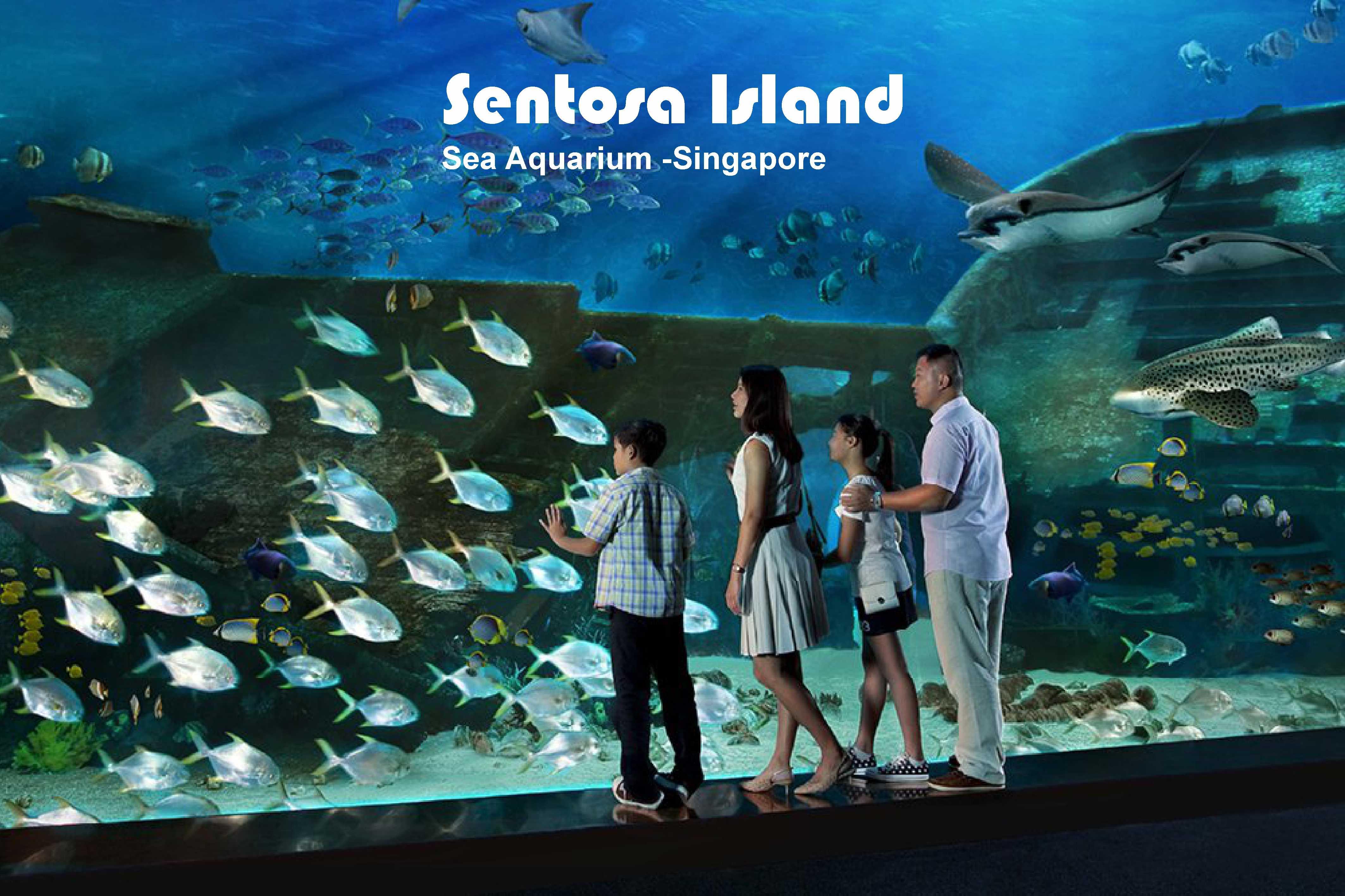 Sentosa Sea Aquarium