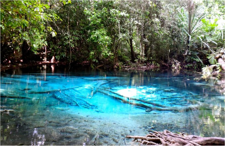 Emerald Pool3