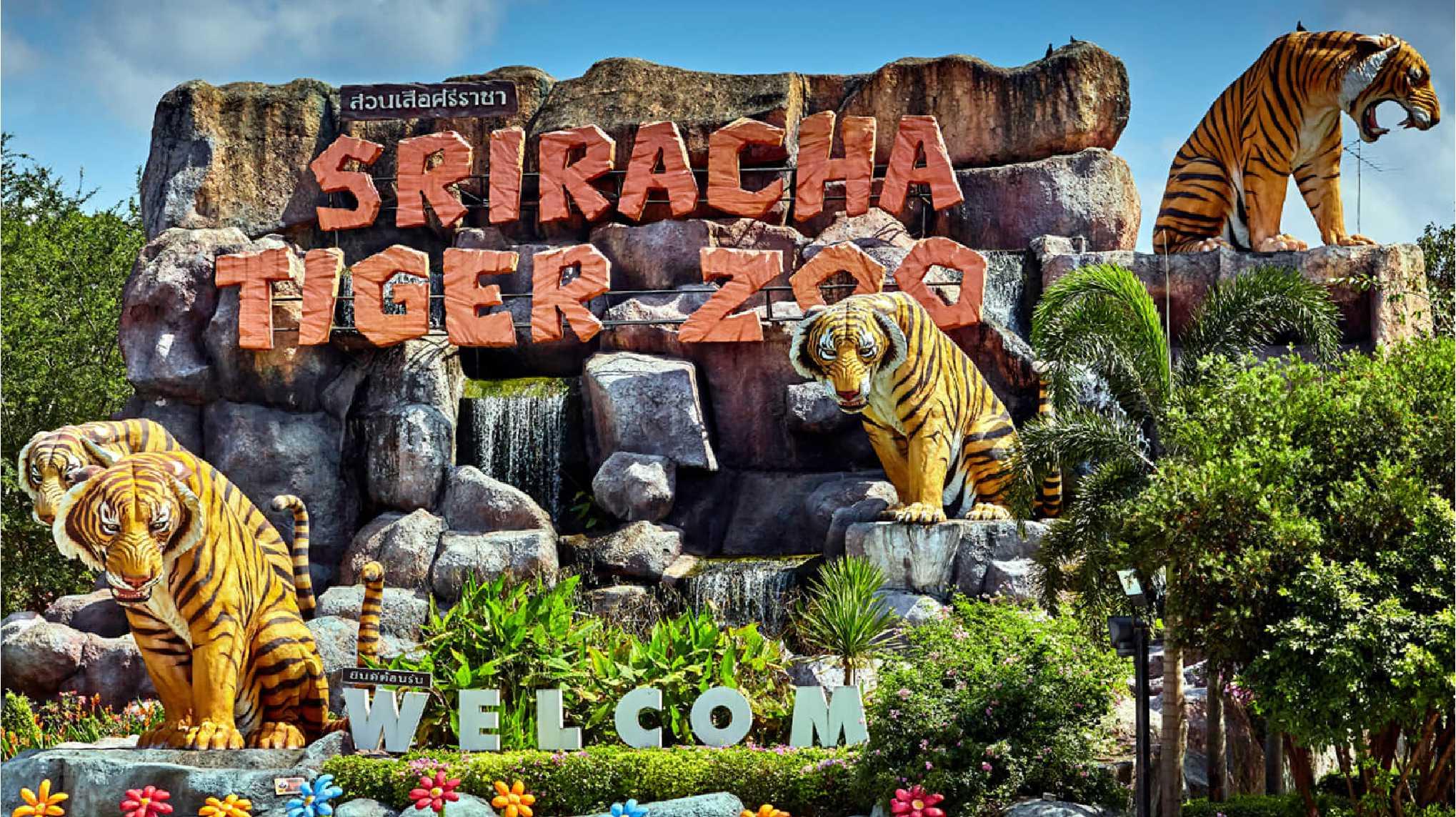 11Sriracha Tiger Zoo